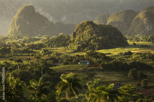 Poster Panoramic view over landscape with mogotes in Vinales Valley ,Cu