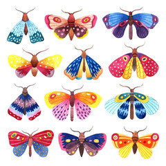 Watercolor set of colorful butterflies