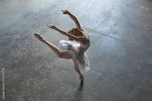 Ballerina indoors Poster