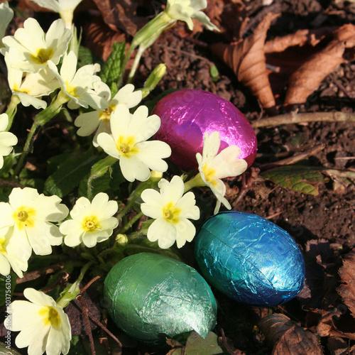 Zdjęcia na płótnie, fototapety, obrazy : Pasqua.  Uova di cioccolato e primule gialle in primavera
