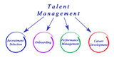 Diagram of Talent Management