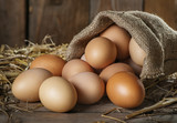 Raw organik farm eggs - 103819597