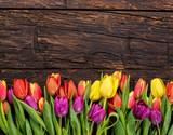 Fototapety fresh tulips arranged on old wooden background