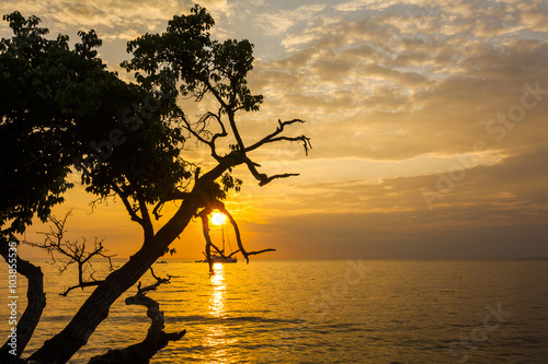 Foto op Aluminium Strand Beautiful sunset on a tropical island. Koh Chang. Thailand.