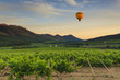 Flying hot air balloon over the mountains and vineyards.