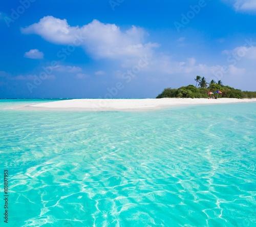 Foto op Canvas Groene koraal Maldives, tropical sea background!