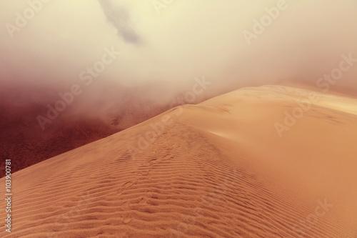 Leinwanddruck Bild Sand dune
