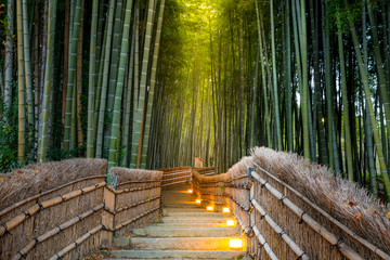 Arashiyama Bamboo Forest © vichie81