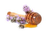 miel avec abeille sur fond blanc