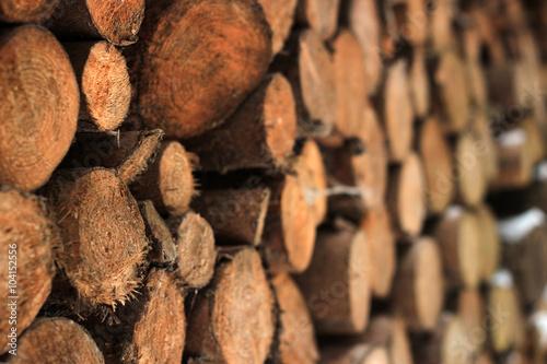 Fotobehang Ree Holzstapel seitlich