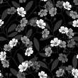 Seamless monochrome pattern with flowering branches on black background.