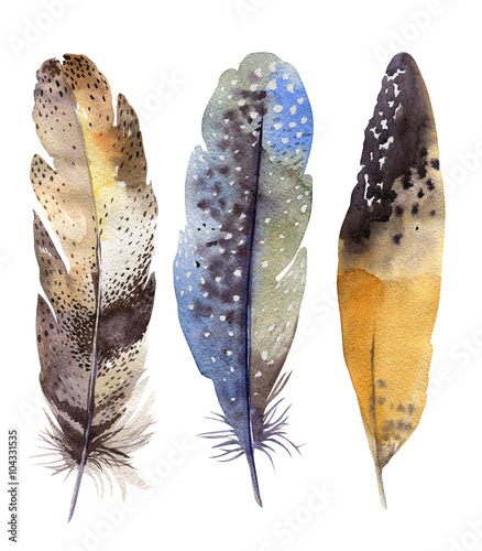 Hand drawn watercolor feather set. Boho style. illustration isol - 104331535