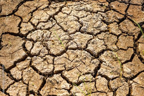 Deurstickers Droogte Cracks in the dried soil in arid season