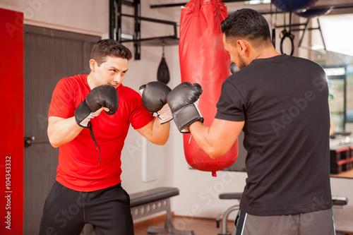 Fototapeta Young men sparring in boxing room