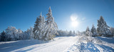 Fototapety Paysage d'hiver panoramique_3