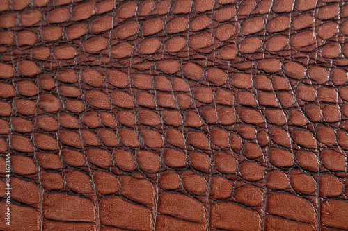Staande foto Leder Artificial crocodile skin texture