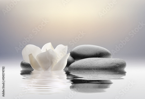 Poster, Tablou stones isolated on water