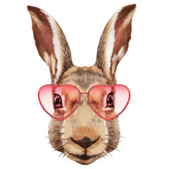 Rabbit in Love! Portrait of Rabbit with sunglasses. Hand-drawn illustration, digitally colored.