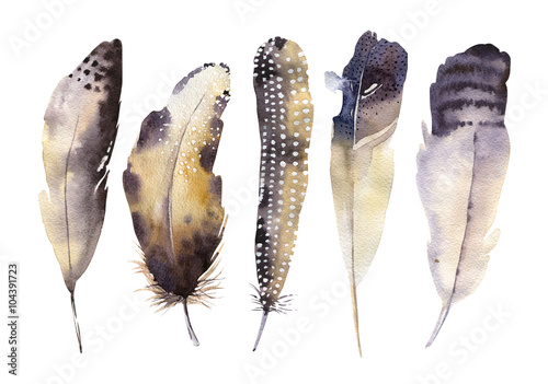 hand-drawn-watercolor-feather-set-boho-style-illustration-isol
