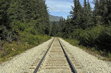 Railroad Tracks in a Remote Wilderness