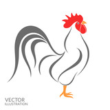 Rooster. Isolated bird on white background