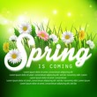 Fresh spring background with grass and flowers
