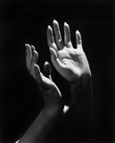 Closeup of a person's hands  - 104449700