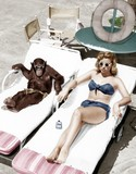 Chimpanzee and a woman sunbathing   - 104458985