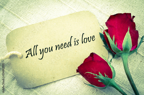 All you need is love. Poster
