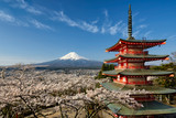 Mount Fuji with pagoda and cherry trees, Japan - 104590590