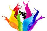 Fototapety colorful wild color splash isolated on white background