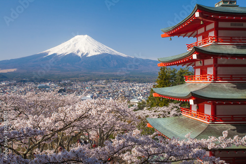 Foto op Plexiglas Japan Japan beautiful landscape Mountain Fuji and Chureito red pagoda with cherry blossom sakura