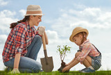 girl plant sapling tree