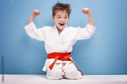 Boy in karate costume. Poster