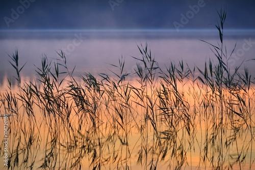 Naklejka Saimaa lake in Finland