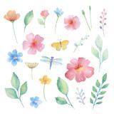 Fototapety Watercolor set of flowers.