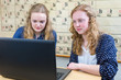 Постер, плакат: Two dutch teenage girls working at computer in chemistry lesson