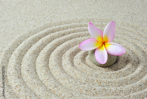 Plexiglas Zen Stenen zen stones with frangipani flower with sand background