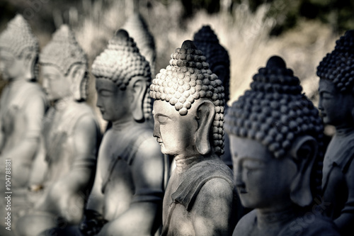 Spoed canvasdoek 2cm dik Boeddha Meditating Buddha Statues in a Row