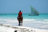Africa,Tanzania,isola di Zanzibar