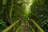 jungla de nepál con puente de madera