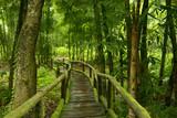 Jungla de Tailandia con puente de madera