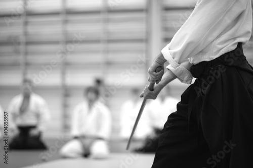 Japanese sword training Poster