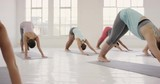 Yoga class multi racial group of women exercising fitness healthy lifestyle