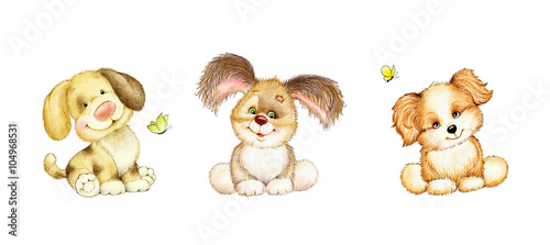 Set of 3 cute puppies