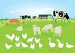 Tiere in der Landwirtschaft