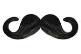 Fototapety Curly mustache isolated on white