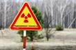 Постер, плакат: Знак радиационная опасность