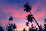 Coconut palms, sharply silhouetted against tropical sunset in Thailand. Palms trees on sky background.