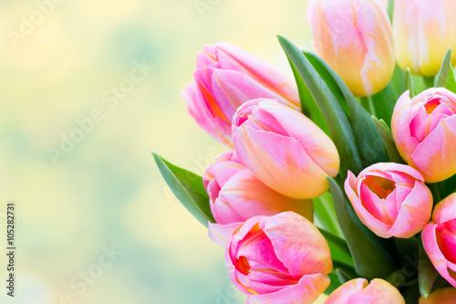 Zdjęcia na płótnie, fototapety na wymiar, obrazy na ścianę : Spring flowers. Tulip bouquet on the bokeh background.